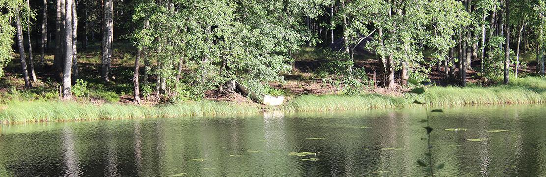 Kalastus Camping Laakasalossa